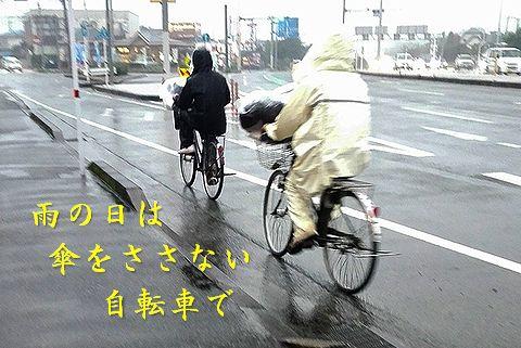 ... 雨の日グッズで雨対策しよう